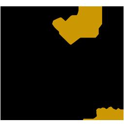 Solo sophi Logo